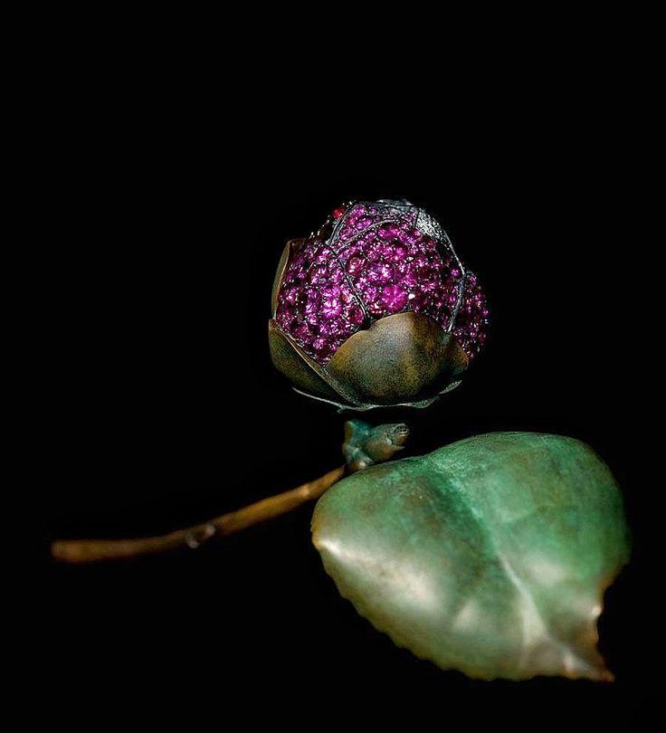 JAR Camelia Brooch 2010 with delicate pavé-set petals. via Jewels du Jour