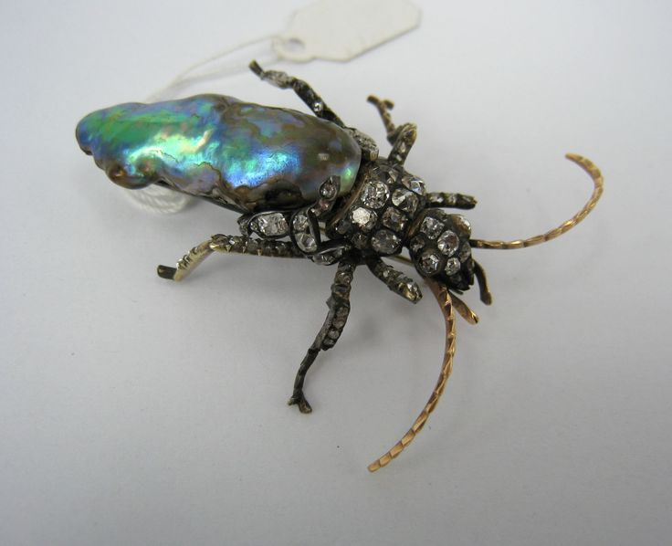 beetle brooch with abalone pearl